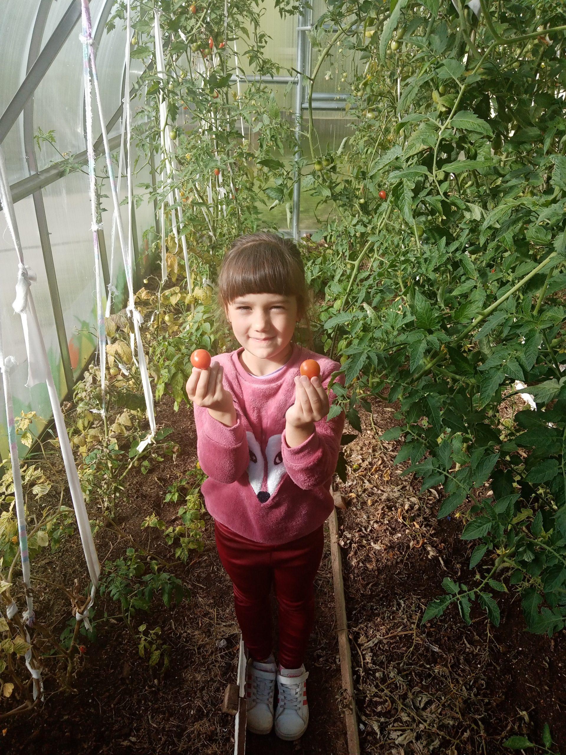 Šiltnamis lopšelyje-darželyje – tai raktas į sveiką mitybą